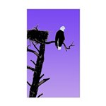 Sunset Bald Eagle Sticker (Rectangle 50 pk)