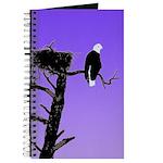 Sunset Bald Eagle Journal