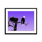 Sunset Bald Eagle Framed Panel Print