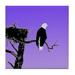 Sunset Bald Eagle Tile Coaster