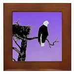 Sunset Bald Eagle Framed Tile