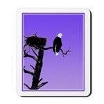 Sunset Bald Eagle Mousepad