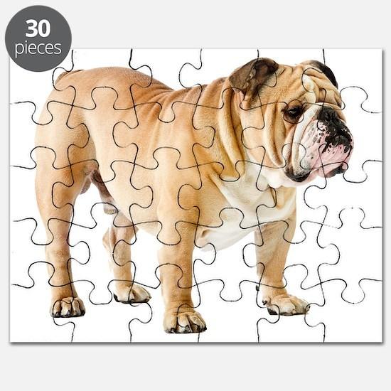 Unique English bulldog Puzzle