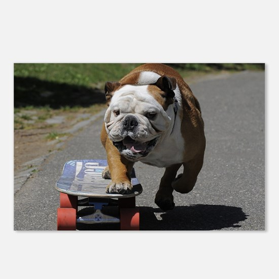 Cute English bulldog Postcards (Package of 8)
