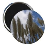 Pampas Grass and Sky Magnet