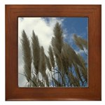 Pampas Grass and Sky Framed Tile