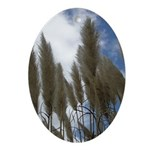 Pampas Grass and Sky Oval Ornament