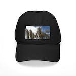 Pampas Grass and Sky Black Cap