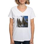 Pampas Grass and Sky Women's V-Neck T-Shirt