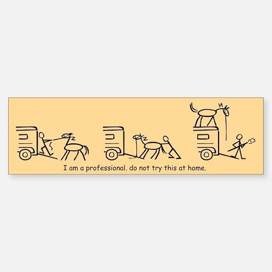 I am a Professional: Hauler / Bumper Bumper Bumper Sticker