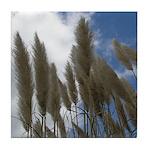 Pampas Grass and Sky Tile Coaster