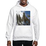 Pampas Grass and Sky Hooded Sweatshirt