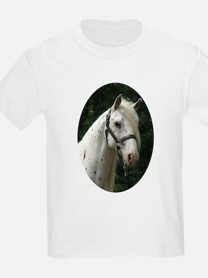 Spanish Jennet Stallion T-Shirt