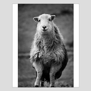 Happy Sheep Poster Design