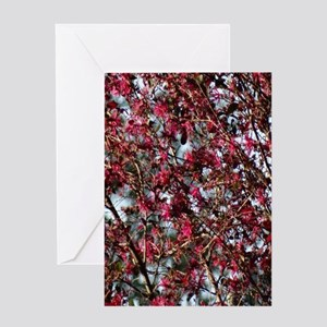 Pink Spring Blooms Greeting Cards