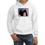 American Party Hooded Sweatshirt