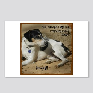 Smelled Something (or) Postcards (Package of 8)