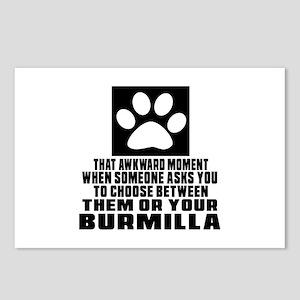 Awkward Burmilla Cat Desi Postcards (Package of 8)