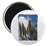 Pampas Grass - Burned Edge Magnet
