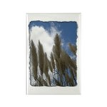 Pampas Grass - Burned Edge Rectangle Magnet (100 p