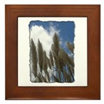 Pampas Grass - Burned Edge Framed Tile