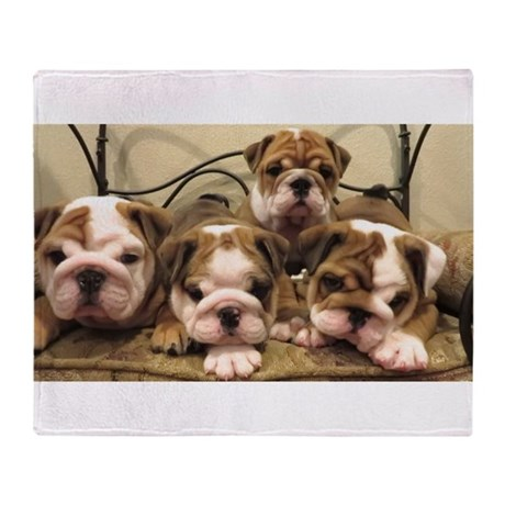 english bulldog blanket english bulldog throw blanket by admin cp120068912 8652