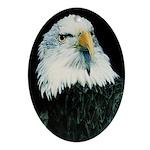 Spirit of America Oval Ornament