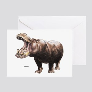 Hippo Hippopotamus Greeting Cards (Pk of 10)