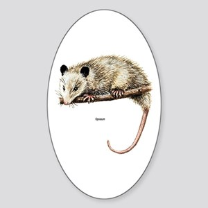 Opossum Possum Oval Sticker