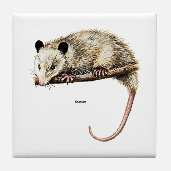 Opossum Possum Tile Coaster