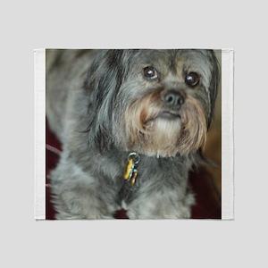 Kona Lhasa type dog up close looking Throw Blanket