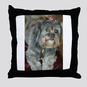 Kona Lhasa type dog up close looking Throw Pillow