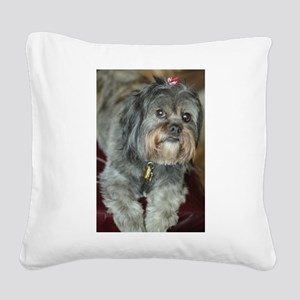 Kona Lhasa type dog up close Square Canvas Pillow