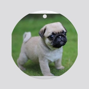 Pug Puppy Round Ornament