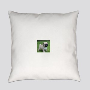 Pug Puppy Everyday Pillow