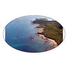Bic Oval Sticker