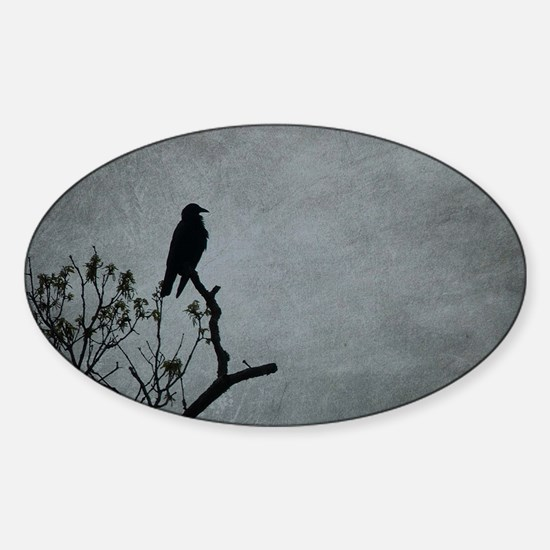 Majestic Crow Decal