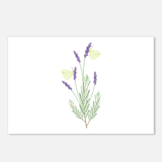 Lavender Butterfly Postcards (Package of 8)