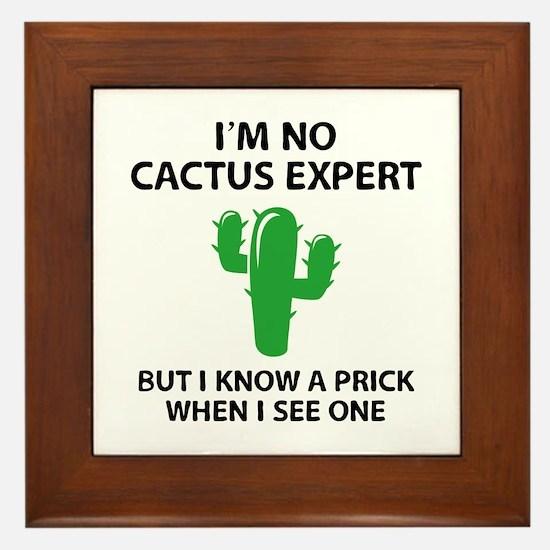 I'm No Cactus Expert Framed Tile