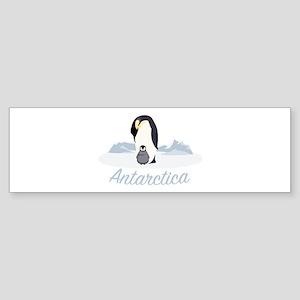 Antarctica Bumper Sticker