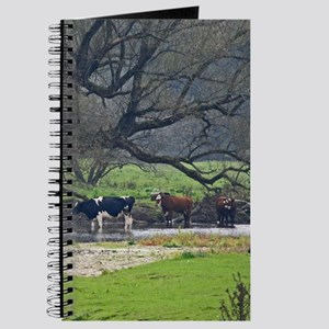 Cows in a Scenic Farm Field Journal