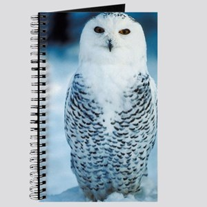Magnificent Snowy Owl Journal