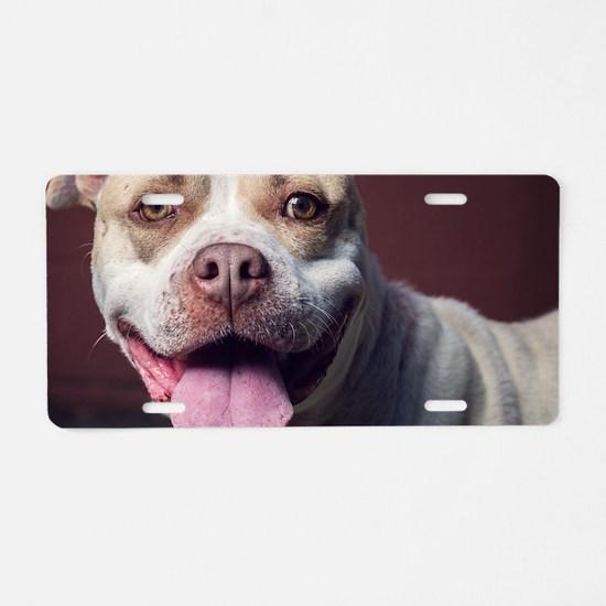 Cute Pitbull Aluminum License Plate