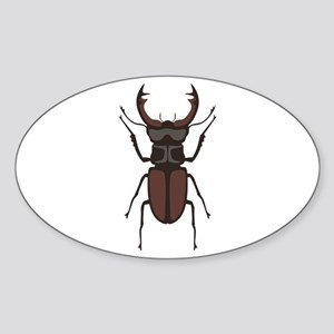 Stag Beetle Sticker