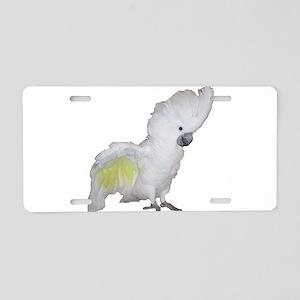 Umbrella Cockatoo Aluminum License Plate