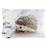 Hedgehog Home Decor