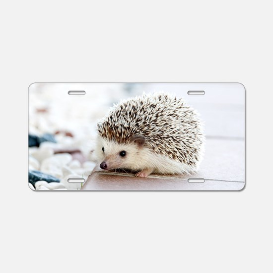 Cute Hedgehog Aluminum License Plate