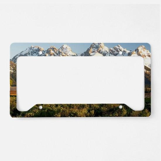 Cute Grand tetons License Plate Holder