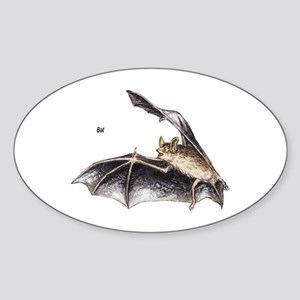 Bat for Bat Lovers Oval Sticker