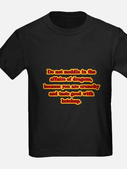 Dragon Warning T-Shirt
